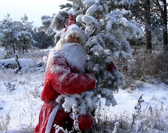 Сказка про Деда Мороза