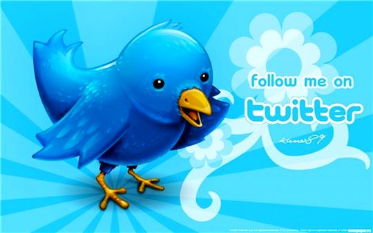 Твиттер социальная сеть